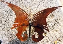 04-069_papillon-2-n1